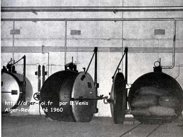 Jardin d 39 essai l 39 insectarium http alger for Auschwitz chambre a gaz